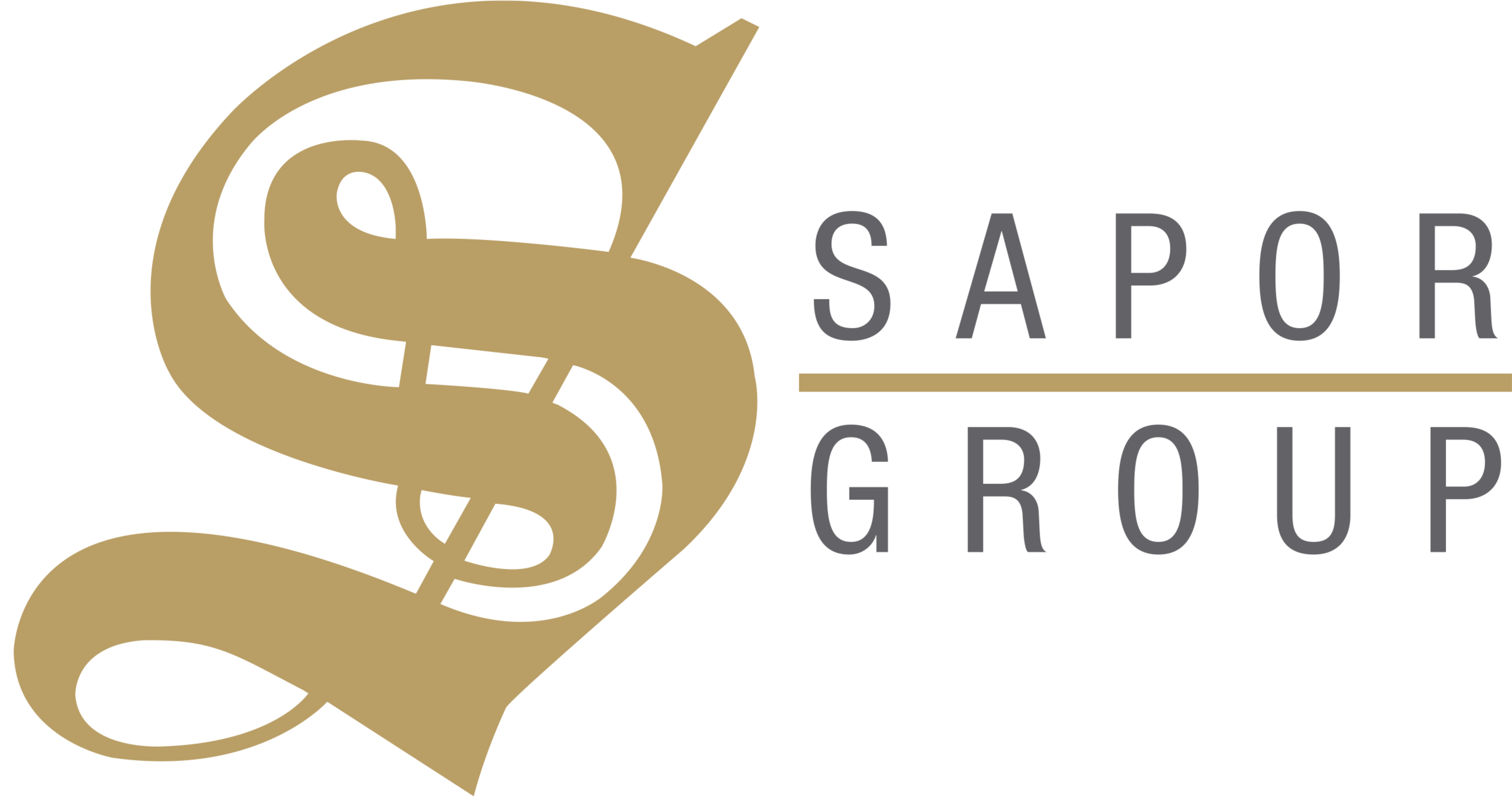 SAPOR Group